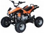 Set carena 110 cc (ptr model atv din poza)