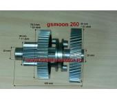 Ansamblu ax transm. cu pin. marsalier Gsmoon260
