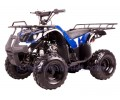 Carene atv copii 110-125cc